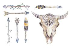 Watercolor cow skull with flowers , arrows and feathers. Boho tr Stock Photos