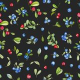 Watercolor cranberry and blueberries seamless pattern. Hand painted on a dark background stock illustration