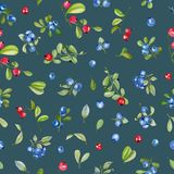 Watercolor cranberry and blueberries seamless pattern. Hand painted on a deep blue background stock illustration