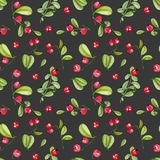 Watercolor cranberry seamless pattern. Hand painted on a dark background vector illustration