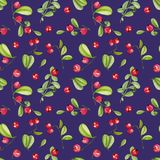 Watercolor cranberry seamless pattern. Hand painted on a deep blue background stock illustration