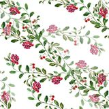 Watercolor Cranberry on a white background. Floral seamless pattern. Cranberry   handmade  white background pattern seamless watercolor color floral  original Stock Image