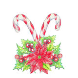 Watercolor crayons Christmas background. Lollipops with poinsettia and holly. Isolated on white vector illustration