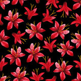 Watercolor crocosmia pattern Stock Photos