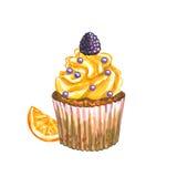 Watercolor cupcake. Watercolor blackberry cupcake. Stock Image