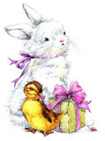Watercolor Cute bunny and little bird,  gift and flowers background Stock Photos