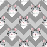 Watercolor cute cats. Seamless pattern 3. Seamless pattern with cartoon watercolor cats royalty free illustration
