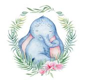 Watercolor cute elephant with floral decor animal illustration. Watercolor cute elephant with floral decor animal hand drawn illustration stock illustration