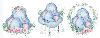 Watercolor cute elephants set animal illustration. Watercolor cute elephants set  animal hand drawn illustration royalty free illustration