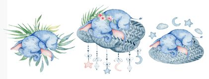 Watercolor cute elephants set sleeping on the cloud animal illustration. Watercolor cute elephants set sleeping on the cloud animal hand drawn illustration royalty free stock images