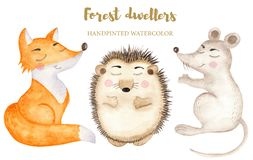 Watercolor cute forest dwellers on a white background. stock illustration