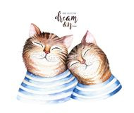 Watercolor cute isolated cat ilustration. Love cartoon cats character for valentine`s card. Nursary art design. Stock Photography