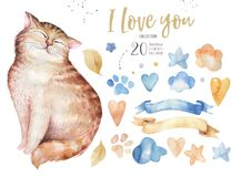 Watercolor cute isolated cat ilustration. Love cartoon cats character for valentine`s card. Nursary art design. Watercolor cute isolated cat ilustration. Love Royalty Free Stock Photography