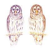 Watercolor cute owl in vintage style Royalty Free Stock Images