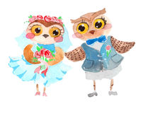 Watercolor cute owls Royalty Free Stock Photography