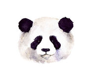 Watercolor cute panda. Panda hand painted watercolor illustration isolated on white background. Watercolor animal silhouette sketch. Wildlife art illustrations Stock Photos