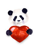 Watercolor cute panda. Watercolor cute lover valentine havanese panda is holding a red heart, isolated on white background. Happy Valentin`es day.Illustration Stock Photography