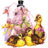 Watercolor cute piggy and little bird, gift and flowers background Stock Photography