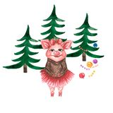 Watercolor cute pigs characters set isolated on white background royalty free illustration