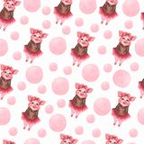 Watercolor cute pigs characters set isolated on white. perfect for card making, birthday invitations and baby design royalty free illustration