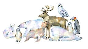 Watercolor cute polar animals illustrations. Hand drawn isolated on a white background Stock Photography