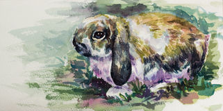 Watercolor of cute rabbit on paper Royalty Free Stock Photo