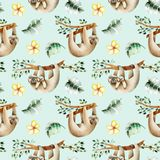 Watercolor cute sloths hanging on the trees and floral elements seamless pattern