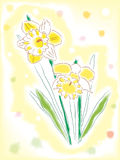 Watercolor daffodils Royalty Free Stock Image