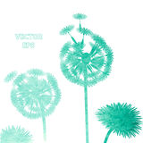 Watercolor dandelion background Stock Photography