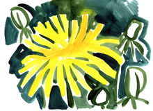 Watercolor dandelion flowers impression painting. In white background Stock Illustration