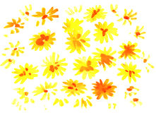 Watercolor dandelion flowers impression painting Stock Photography