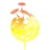Watercolor dandelion on a white background. Yellow watercolor dandelion on a white background Royalty Free Stock Images
