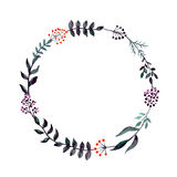 Watercolor Dark Floral Wreath with Red and Purple Berries Stock Photos