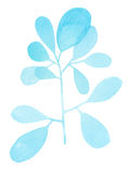 Watercolor decorative blue branch Stock Photography