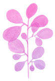 Watercolor decorative pink branch Royalty Free Stock Image