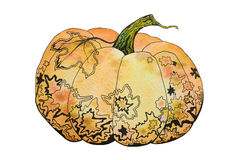 Watercolor decorative pumpkin Royalty Free Stock Photography