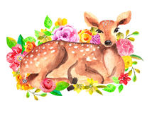 Watercolor deer with flowers Stock Photos