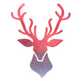 Watercolor deer head on a white background Stock Image