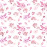 Watercolor delicate floral pattern with pink roses on white background. Beautiful botanical print stock illustration