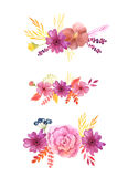 Watercolor delicate pink flowers and leaves. Set of hand painted watercolor delicate and romantic flowers, leaves and branches inspired by autumn garden plants Royalty Free Stock Photography