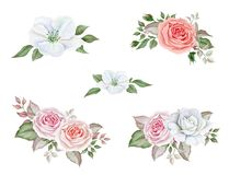 Watercolor delicate wedding bouquets set. Hand drawn watercolor image of floral bouquets isolated on white background vector illustration