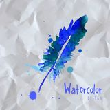 Watercolor design element feather Stock Images