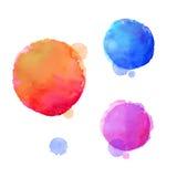 Watercolor design elements. Vector illustration Stock Photos