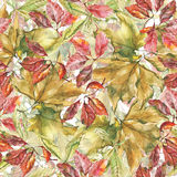 Watercolor different leaves seamless pattern. Seamless pattern with watercolor dry autumn red and yellow leaves of sycamore, grape and chestnut stock illustration