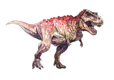 Watercolor dinosaurus, T-rex Stock Images