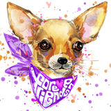 Watercolor dog illustration. Cute puppy dog. Stock Images