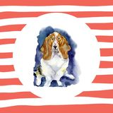 Watercolor dog - a symbol of 2018. Illustration of a Basset hound on striped background. Watercolor dog - a symbol of 2018. Illustration of a Basset hound on Royalty Free Stock Photos