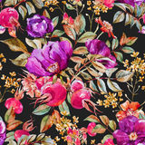 Watercolor dogrose pattern Royalty Free Stock Photos
