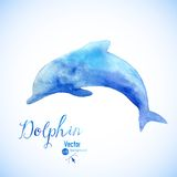 Watercolor dolphin background symbel. Jumping blue dolphin watercolor painted Stock Images