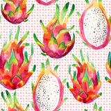 Watercolor dragon fruit seamless pattern on doodle background Stock Photos